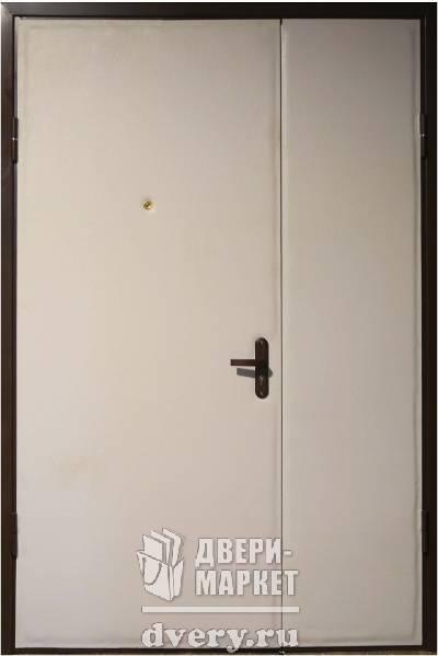 металлическая тамбурная дверь россия