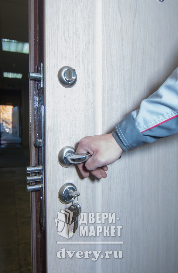 цена на монтаж входной двери